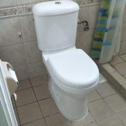 baron toilet bowl installation toilet bowl city singapore hdb Hillview 1