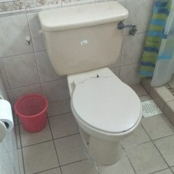 baron toilet bowl installation toilet bowl city singapore hdb Hillview