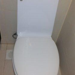 toilet bowl replacement toilet bowl city singapore commercial kallang