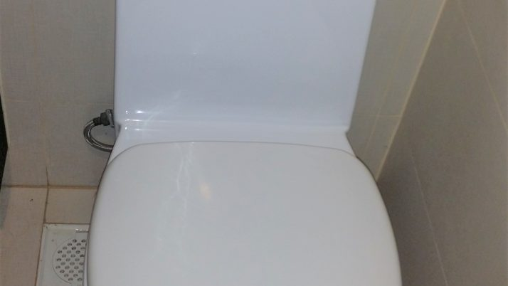 Toilet Bowl Replacement in Singapore Commercial Building – Kallang
