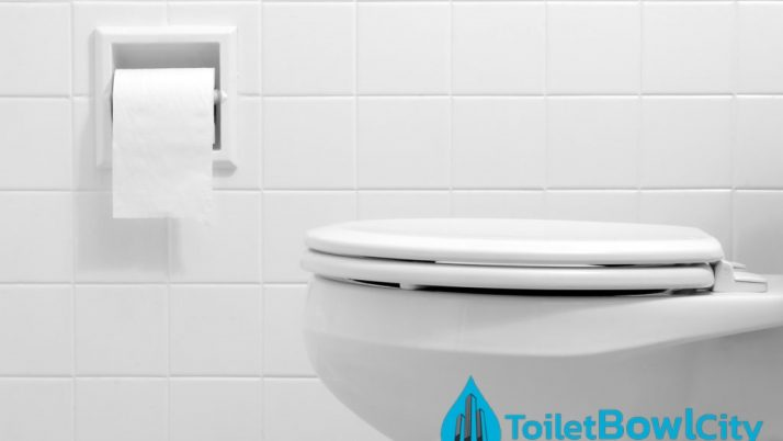 Top 3 Best-Selling Toilet Bowl Brands in Singapore