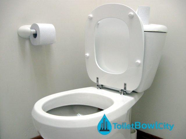 buy toilet bowl singapore toilet bowl city singapore