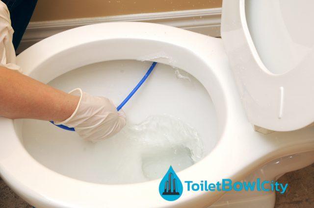 sg toilet bowl city singapore