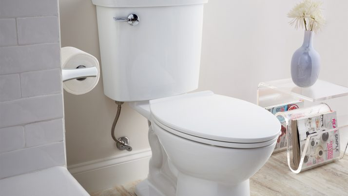 Signs that you need a toilet bowl replacement