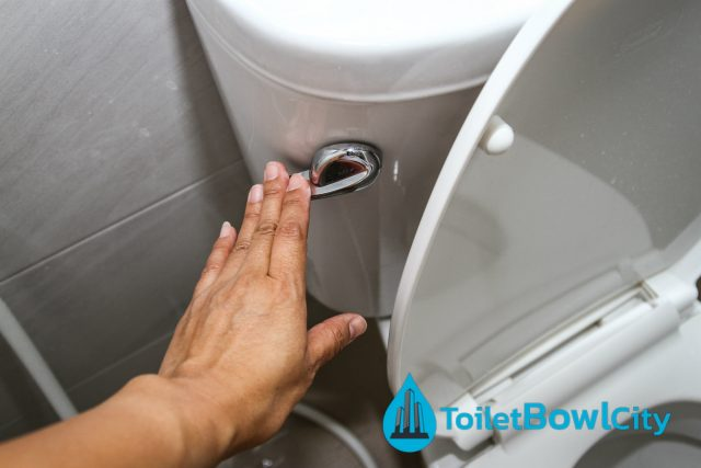toilet bowl size toilet bowl city singapore